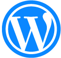 Custom Wordpress Solutions